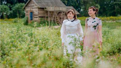 """Photo of Sống ảo """"mệt xỉu"""" tại 2 cánh đồng hoa tam giác mạch Hà Nội đang rực nở"""