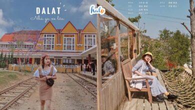 Photo of Lịch trình du lịch Đà Lạt 3 ngày 2 đêm kèm chi phí siêu rẻ