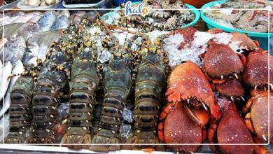 Photo of Quán ăn ngon ở Mũi Né – Gợi ý cho bạn