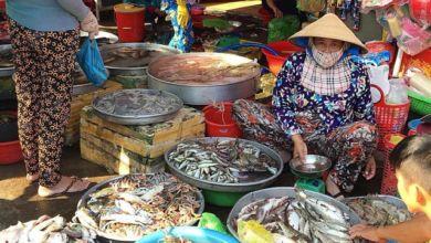 Photo of Chợ hải sản Phú Quốc có gì hấp dẫn?
