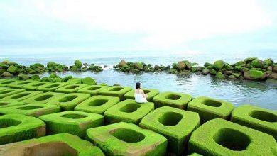 """Photo of """"Soi"""" bản đồ du lịch Phú Yên tìm điểm check in mỏi tay"""