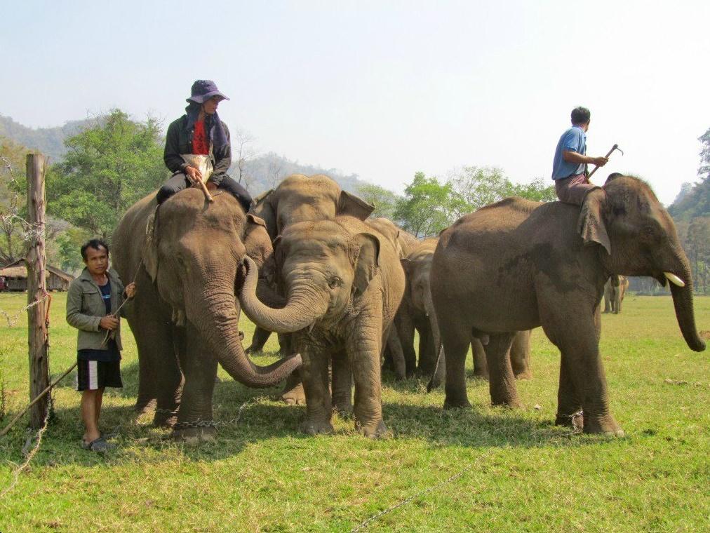 thailan_kinh-nghiem-du-lich-phuket-08