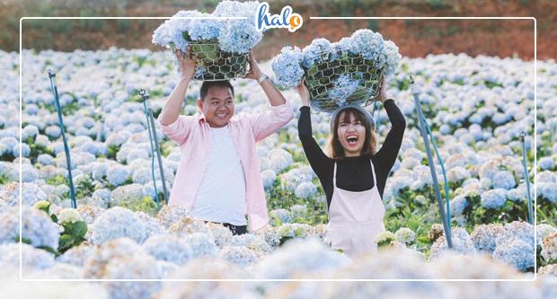 """Photo of """"Soi"""" bản đồ khách sạn Đà Lạt để tìm khu vực chọn chỗ ở phù hợp"""