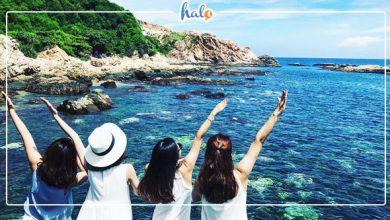 Photo of Vực phun Phú Yên – một điểm du lịch sinh thái thú vị