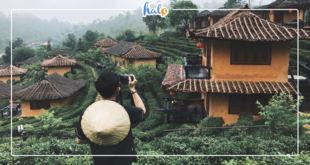 thailan_ban-rak-phuong-hoang-10