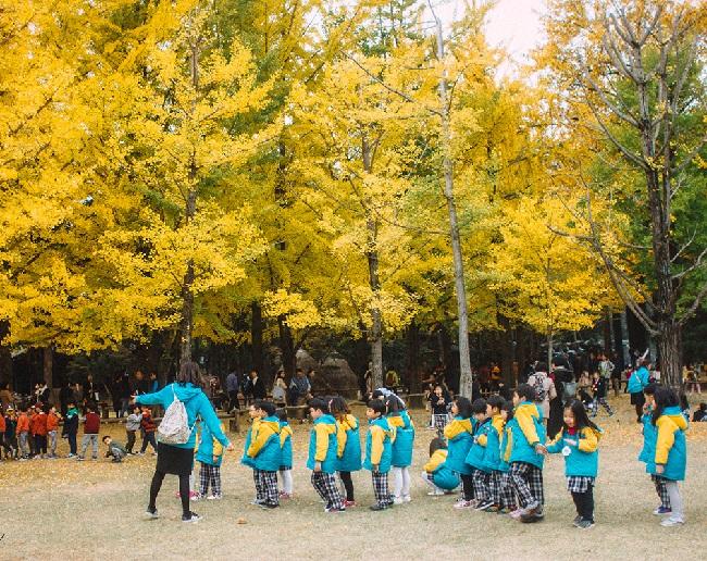 hanquoc_tu-di-tu-seoul-ra-dao-nami-01
