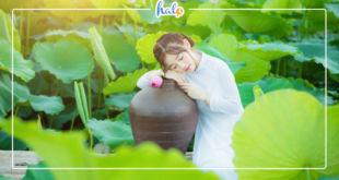 hanoi_dam-sen-dang-no-no-ro-10