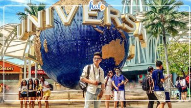 Photo of Cẩm nang du lịch Singapore cho những ai đến lần đầu