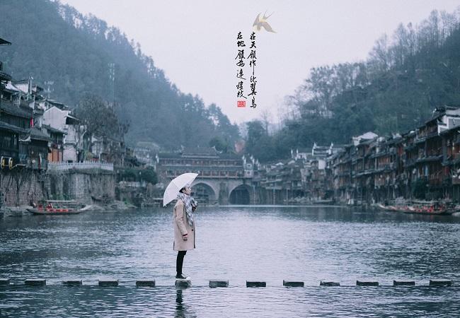 trungquoc_phuong-hoang-co-tran_01