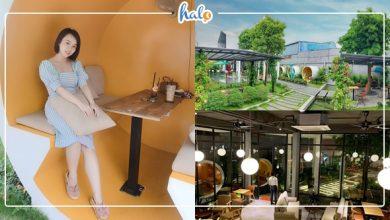 Photo of Check-in CAFE ỐNG CỐNG – CẦU KÍNH độc nhất vô nhị tại Sài Gòn
