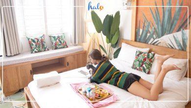 """Photo of """"Trốn nắng"""" Sài Gòn tại """"thiên đường nhiệt đới"""" Tropical Shelter Homestay"""