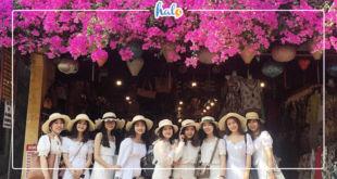 danang_gian-hoa-giay-hoi-an