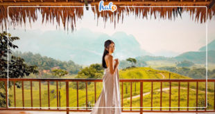thanhhoa_pu-luong-retreat