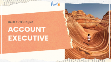 Photo of HALO – Tuyển dụng ACCOUNT EXECUTIVE