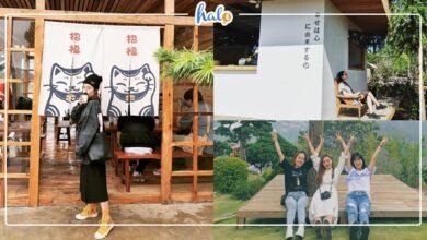 """Photo of Kokoro cafe Đà Lạt – """"chớp mắt"""" một cái là đến ngay Nhật Bản"""