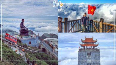 Photo of Chinh phục 600 bậc thang, hướng về ĐẠI TƯỢNG PHẬT cao nhất Việt Nam
