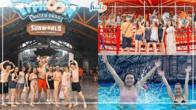"""Photo of HOT: """"Phá đảo"""" HẠ LONG PARK với KHUYẾN MÃI GIẢM GIÁ VÉ cực đã từ ngày 19/08"""