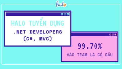 Photo of HALO – Tuyển dụng .NET Developers (C#, MVC)