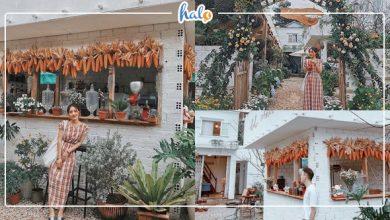 Photo of Lạc vào cafe vườn hoa BOHO CORNER mới toanh đậm chất vintage ở Đà Lạt