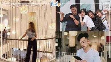 """Photo of Phát hiện tiệm ăn view sống ảo cực """"xịn sò"""" LULÁ NAM Đà lạt"""