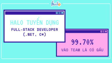 Photo of HALO – Tuyển dụng Full-stack Developer (.NET, C#)