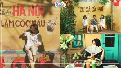 Photo of 4 QUÁN CAFE TƯỜNG VÀNG Hà Nội, cần gì đi Đà Lạt đâu