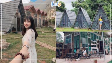 """Photo of Check-in LỀU GỖ đẹp """"không góc chết"""" ở Mộc Châu"""
