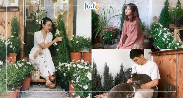 """Photo of """"Hồn Đà Lạt"""" giữa lòng Sài Gòn tại TIỆM CAFE CÚC HỌA MI độc đáo"""
