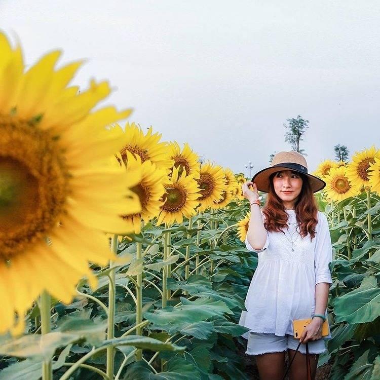 Hoa-dong-garden-binhchanh-03