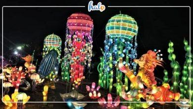 """Photo of """"Điêu đứng"""" trước LỄ HỘI ĐÈN LỒNG lung linh tại Aeon mall Tân Phú"""