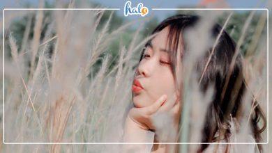 """Photo of """"Đứng tim"""" CÁNH ĐỒNG CỎ LAU Hà Nội vào mùa đẹp gợi tình"""