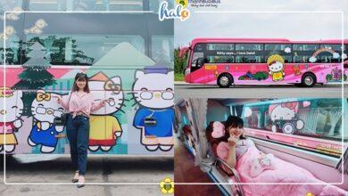 """Photo of XE BUS HELLO KITTY cho hành trình Sài Gòn đi Đà Lạt """"cute hết sẩy"""""""