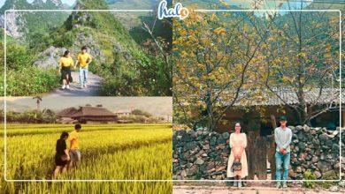 """Photo of Hành trình """"vượt ngàn cây số"""" phượt Hà Giang của đôi bạn trẻ Đà Nẵng"""