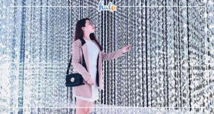 dalat_vuon-anh-sang-lumiere-da-lat