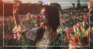 hanoi_du-lich-bai-da-song-hong