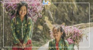 hagiang_lich-trinh-ha-giang-5N4D-