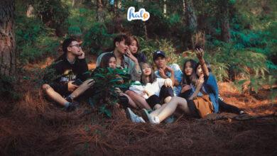 Photo of Núi Hàm Lợn 'rừng thông Đà Lạt' gần Hà Nội mà hội bạn thân nhất định phải đi