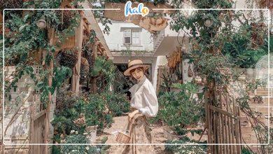"""Photo of """"Tan chảy con tim"""" với 6 QUÁN CAFE HOA ở Đà Lạt"""