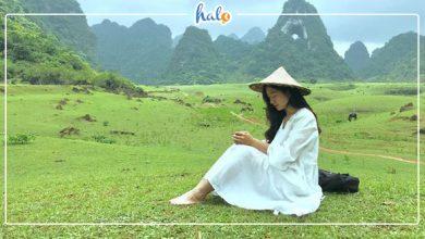 Photo of Lạc trôi tới THẢO NGUYÊN XANH đẹp bình yên ở Cao Bằng