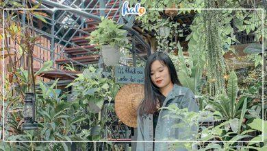 Photo of Dân tình lùng sục tọa độ TIỂU ĐÀ LẠT ngay trong lòng Sài Gòn