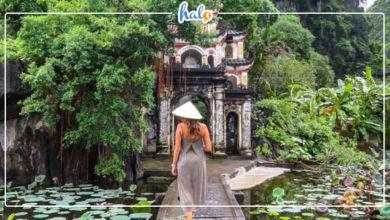 Photo of Tam Cốc Bích Động: khu danh thắng đệ nhất Ninh Bình