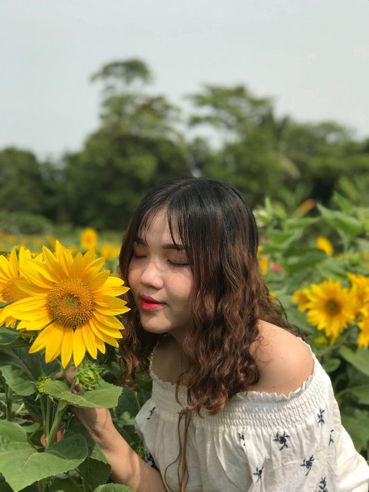 an-giang-vuon-huong-duong-an-giang-3