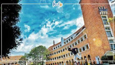 Photo of Cập nhật list địa điểm vui chơi mới Đà Lạt, tha hồ sống ảo