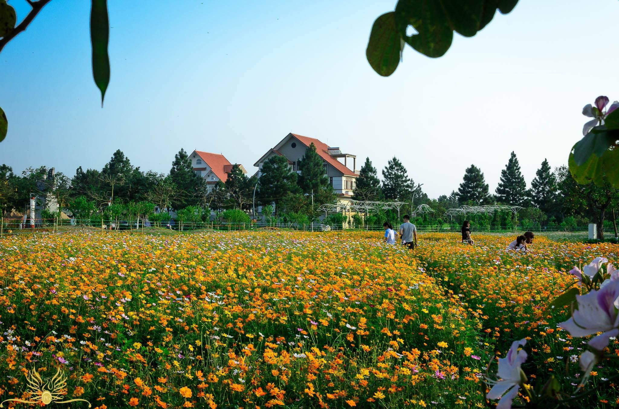 khu-sinh-thai-Phung-Dan-Phuong-04