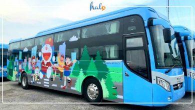 """Photo of Xe bus Doraemon Thành Bưởi: đi Đà Lạt """"nhanh như bay"""""""
