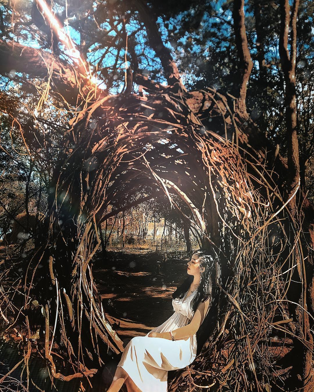 da-lat-secret-garden-sg-newland-da-lat-15