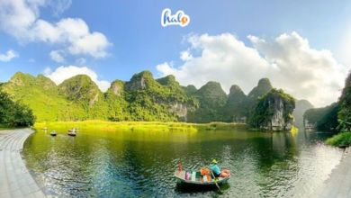 Photo of Sống ảo 'cháy máy' với những địa điểm checkin Ninh Bình cực hot