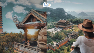 Photo of Kinh nghiệm đi chùa Bái Đính chi tiết từ A-Z năm 2020, xem ngay kẻo lỡ