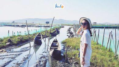 Photo of Đầm Ô Loan điểm đến đầy cuốn hút tại Phú Yên