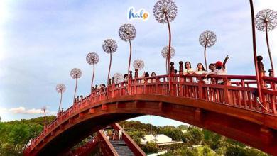 Photo of Bật mí kinh nghiệm đi Ha Long Park cho hội bạn thân